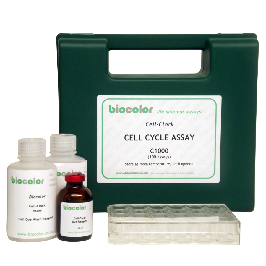 cell clock assay